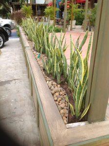 Obra paisajista xero jardineria